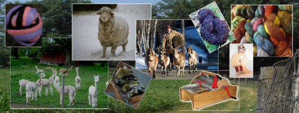 Ashland fiber festival