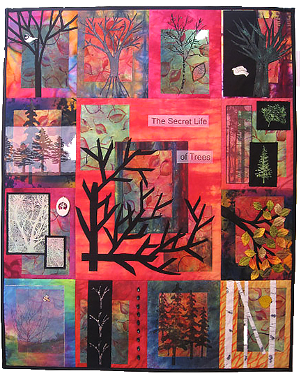 Secret Life of Trees_1