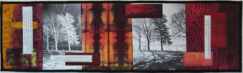 Tree Shadows, 35 x 10, photo transfer, collage, machine quilting, cotton, $240