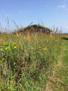 Sod House roofline above the prairie.