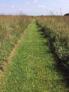 Prairie walkway.